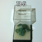 Fuchsite  natural rock specimens in case